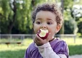 A toddler eating an apple