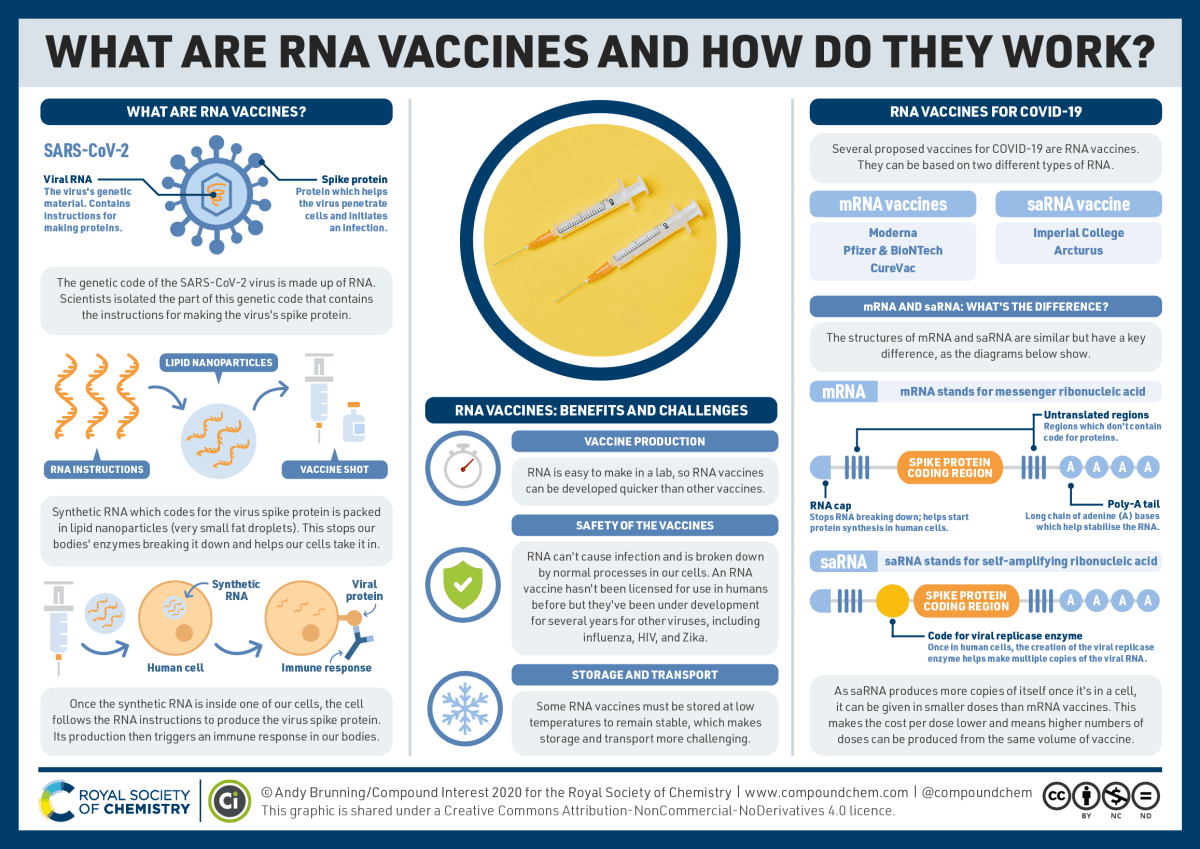 RNA-vaccines-and-how-they-work